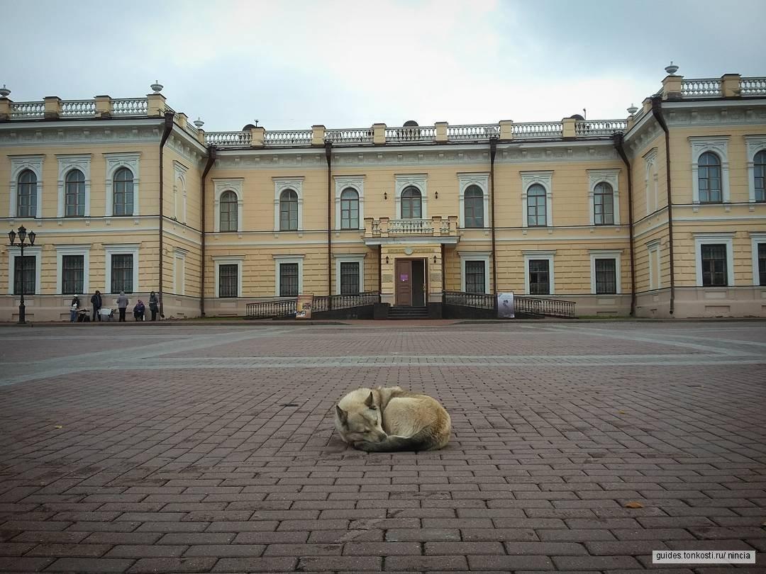 Живая история Вологды