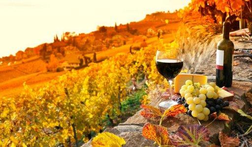 Винный тур в Тоскане