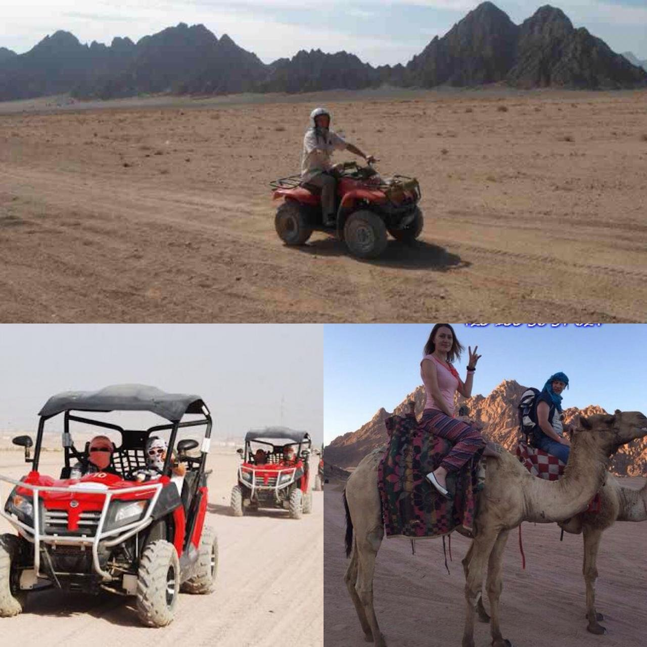 Экстрим-сафари (багги + квадроциклы + верблюды)