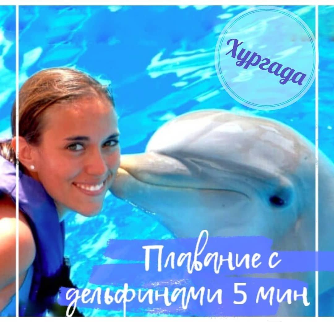 Плавание с дельфинами (5 минут) в дельфинарии Хургады