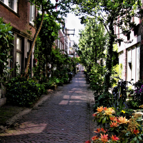 Харлем — город цветов и «старший брат» Амстердама