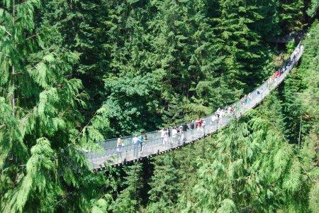 Северный Ванкувер. Подвесной мост Капилано, 4 часа