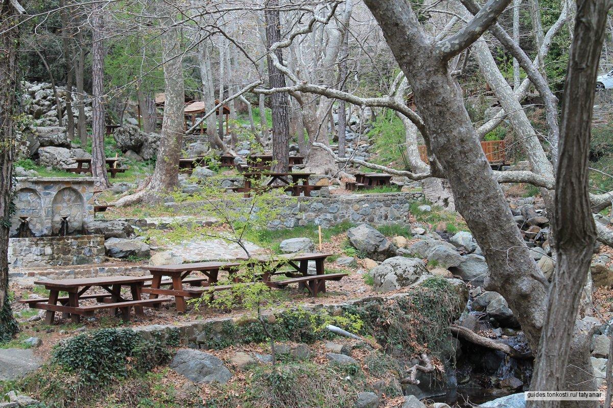 Пикник в горах для взрослых и детей. Выезд из Лимассола