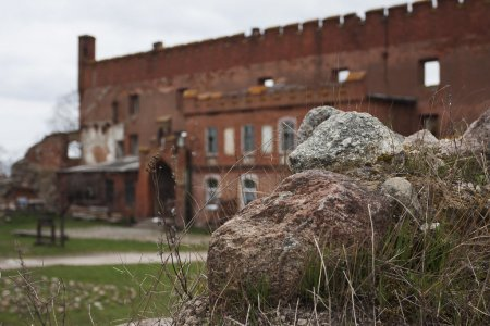 Замок Шаакен и Зеленоградск . Сыроварня с дегустацией.