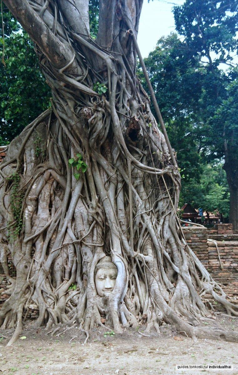 Аюттхая — древняя столица Сиама