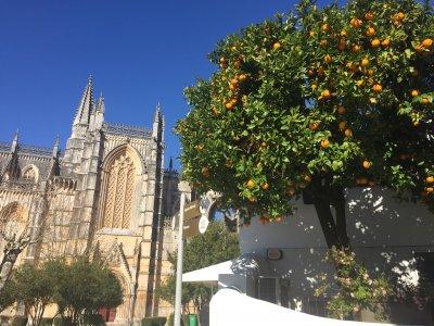 По аллеям португальских традиций