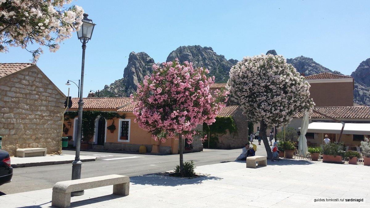 Express-Sardinia — индивидуальные экскурсии для круизников