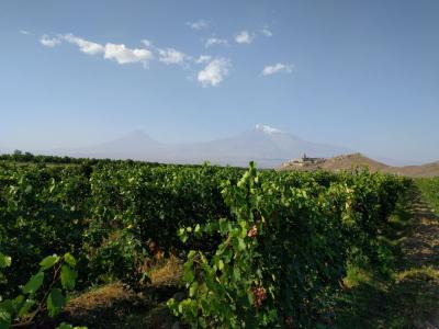 Вкусная Армения на майские