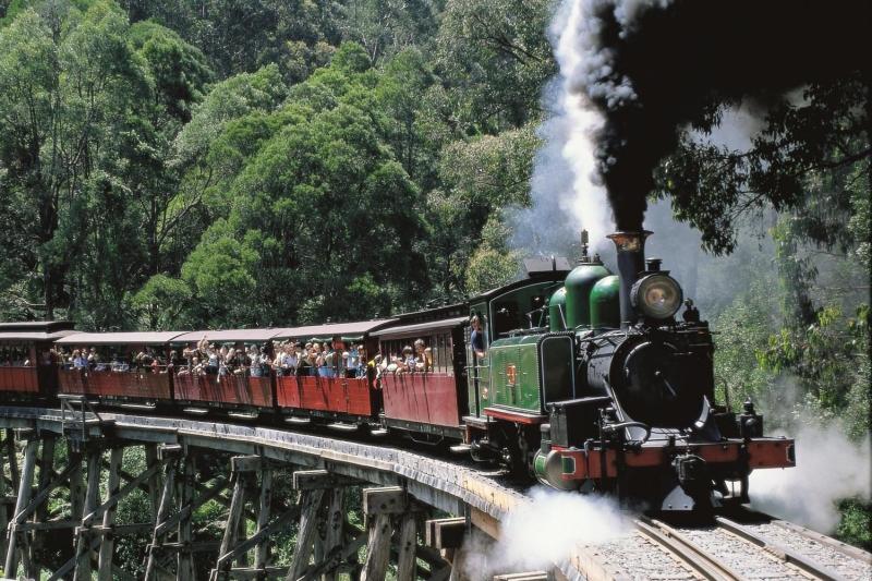 Экскурсия в национальный парк Данденонг и винодельни долины реки Ярра