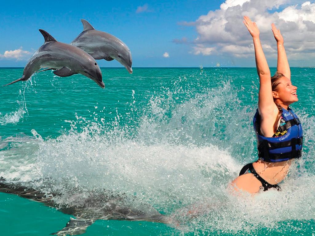 Плавание с двумя дельфинами