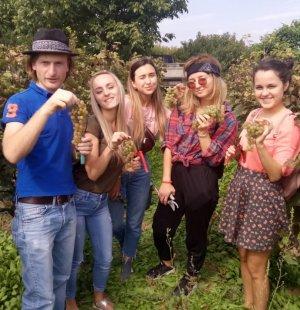 Ртвели – праздник сбора винограда (сентябрь-октябрь)