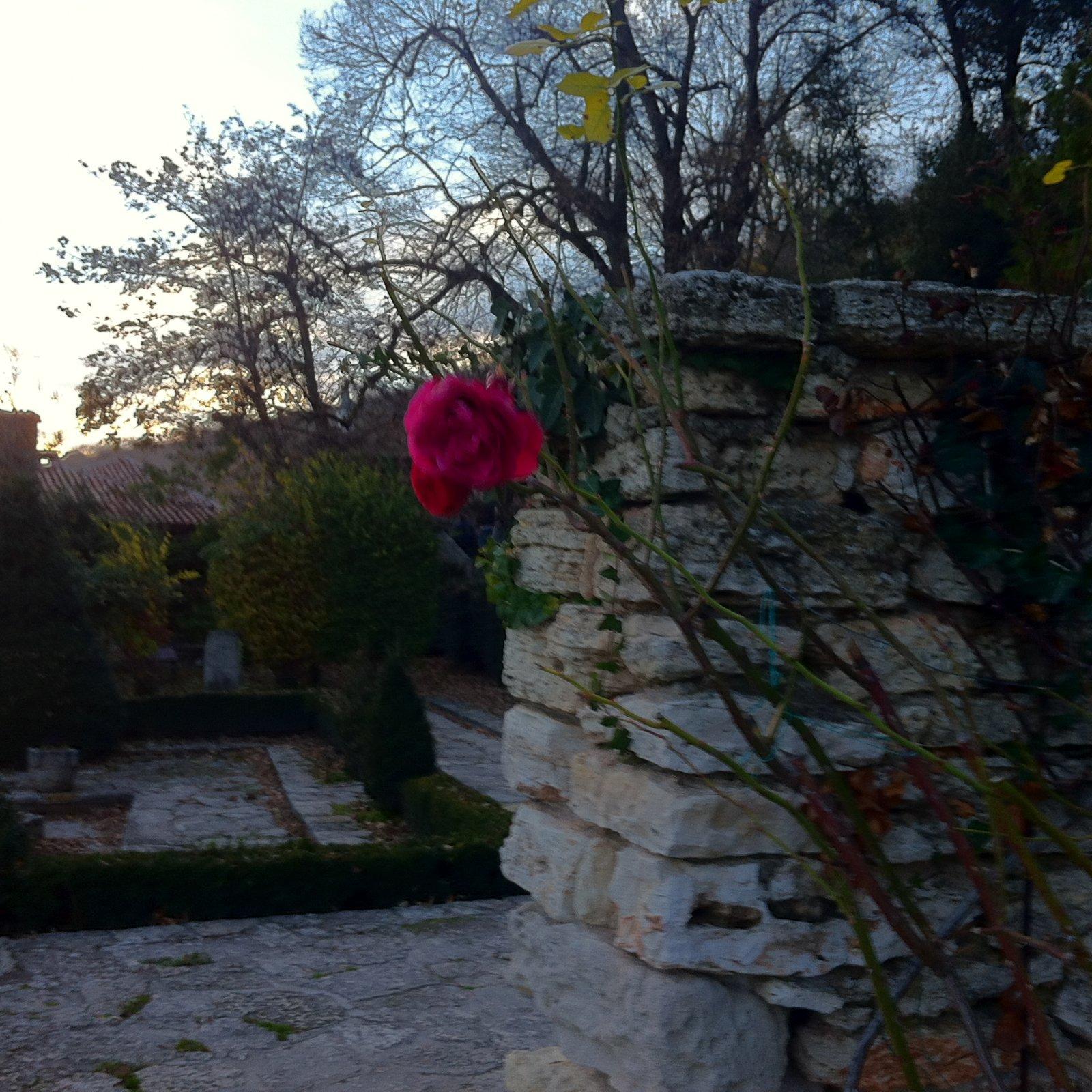 Царская Долина роз и вина