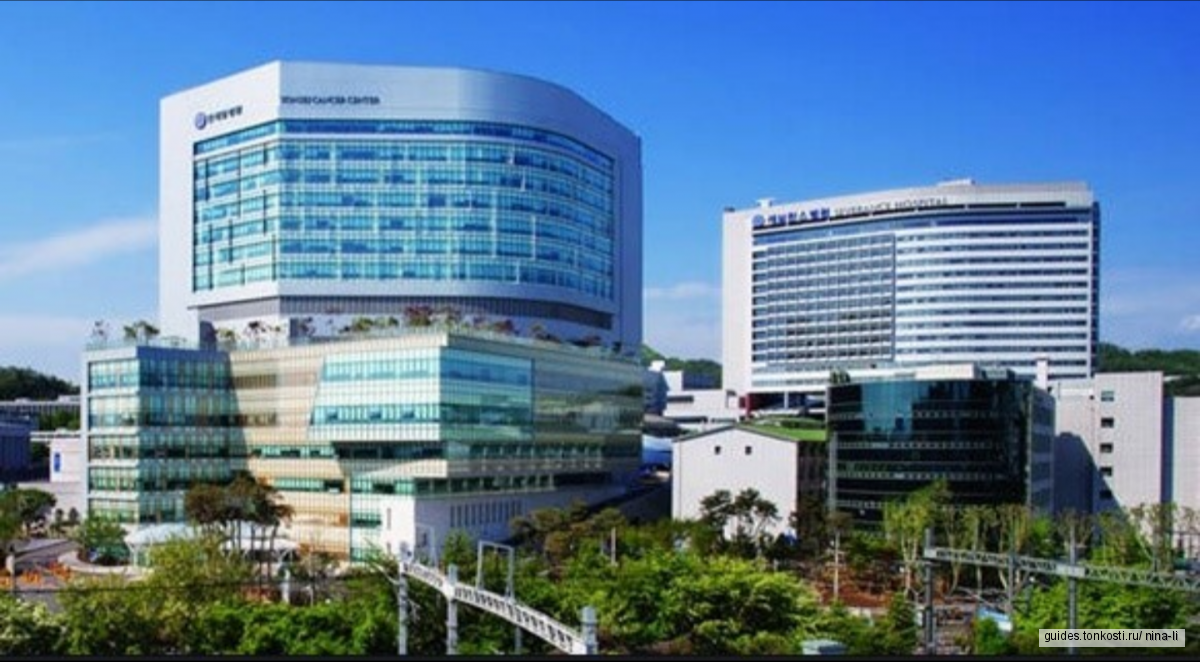 Медицинский туризм по Сеулу