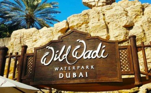 Аквапарк Wild Wadi (Индивидуально)