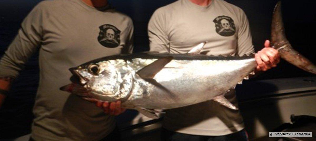 Ночная морская рыбалка на специальном катере
