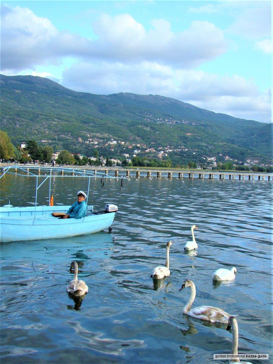 Три страны за один день! «Балканский Иерусалим». Вокруг озера Охрид! Живописная Албания!