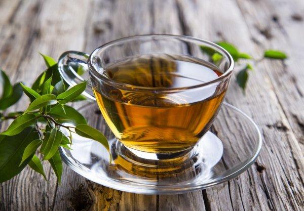На родину Краснодарского чая