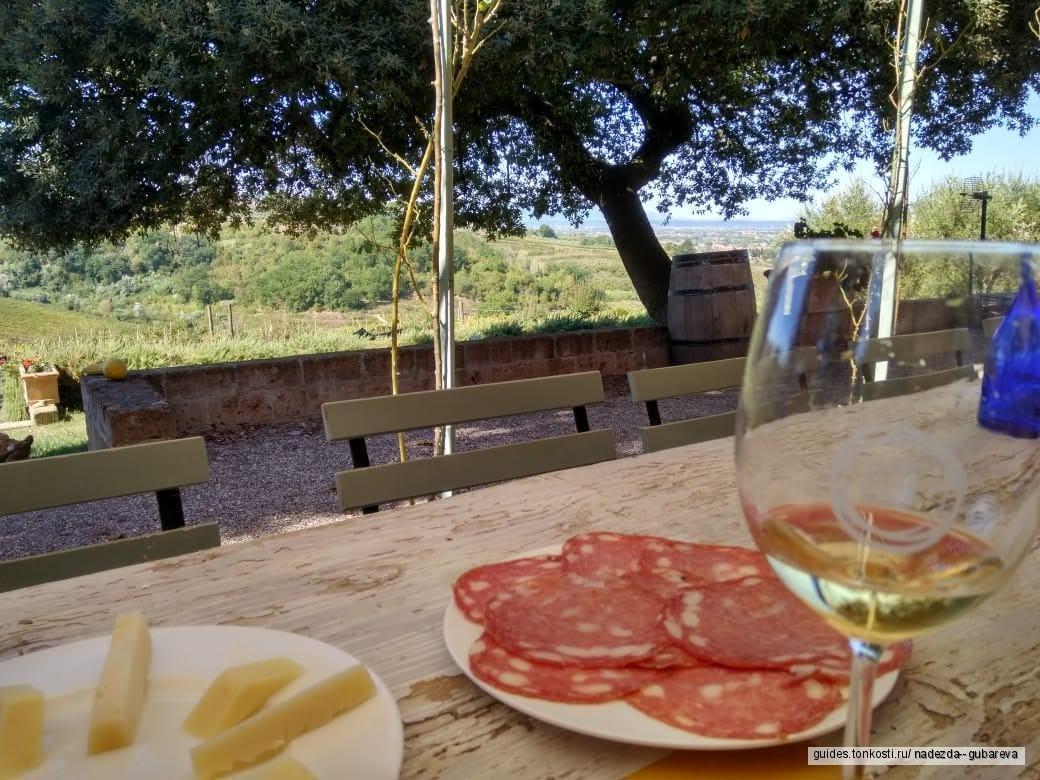 Пиза и Лукка, вино и море
