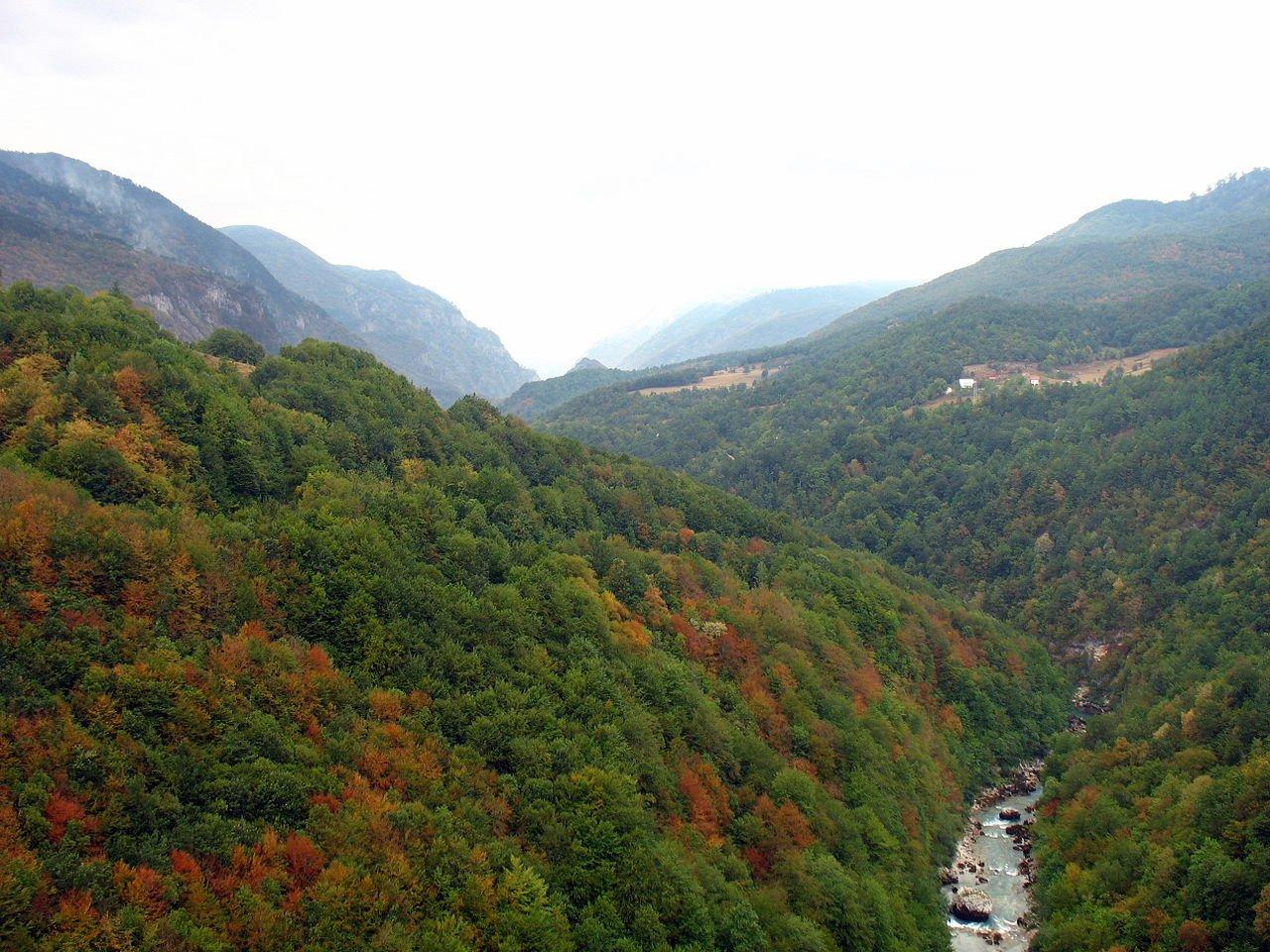Оздоровительные туры в Черногорию