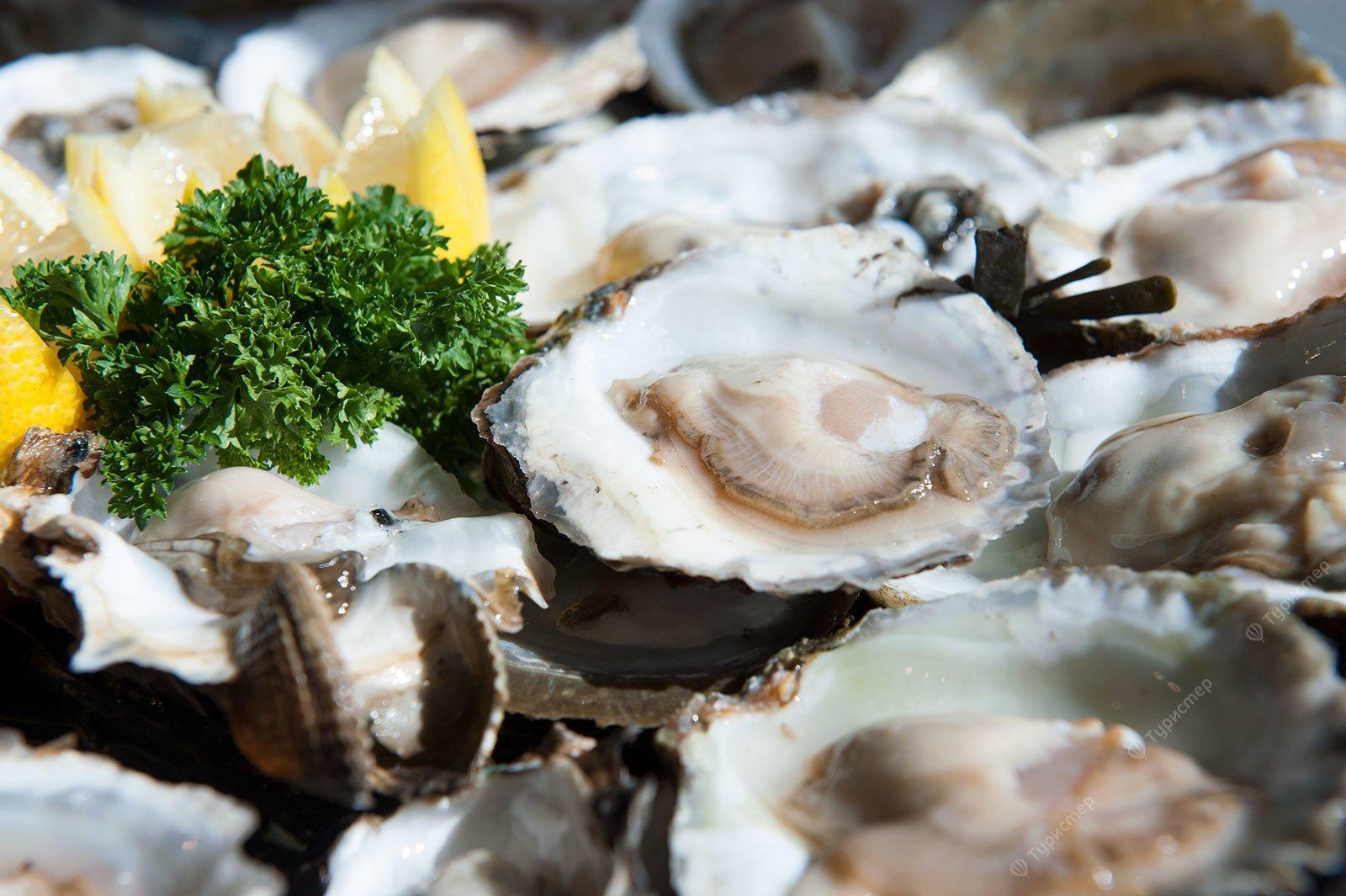 Любителям морепродуктов посвящается. Морские изыски Зеландии. Экскурсия на устричные фермы