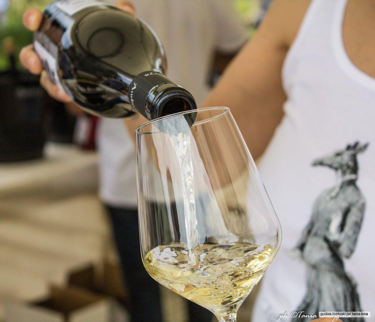 На Сардинии пить не вредно. Экскурсия на винодельню