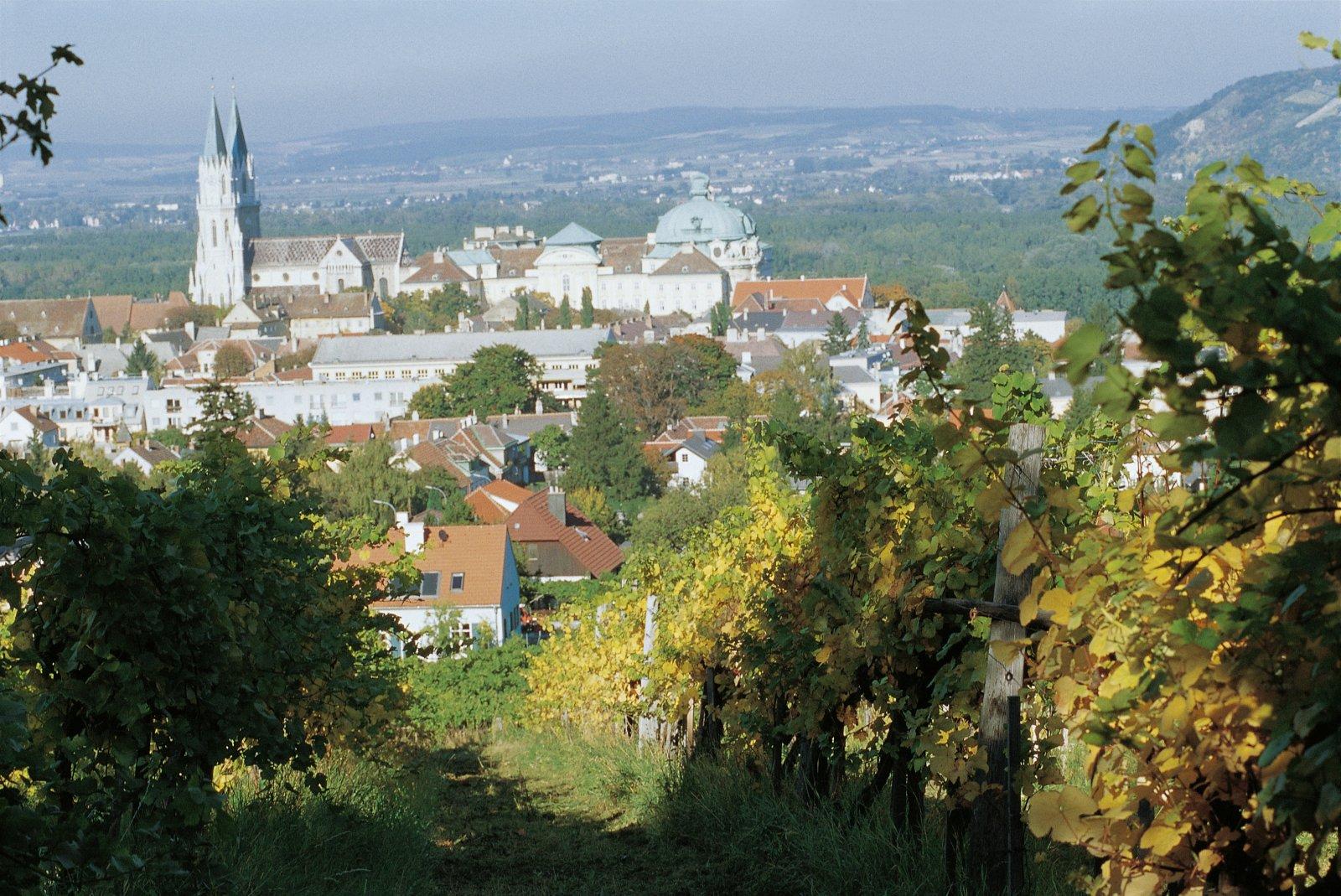 Монастырь Клостернойбург — старейшая школа виноделия