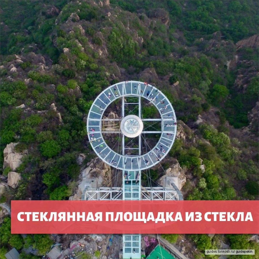 Путешествие на Смотровую Площадку из стекла с обзором Каменного Леса