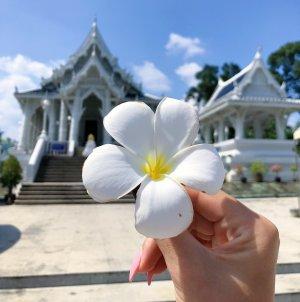 Обзорная экскурсия по Краби Таун