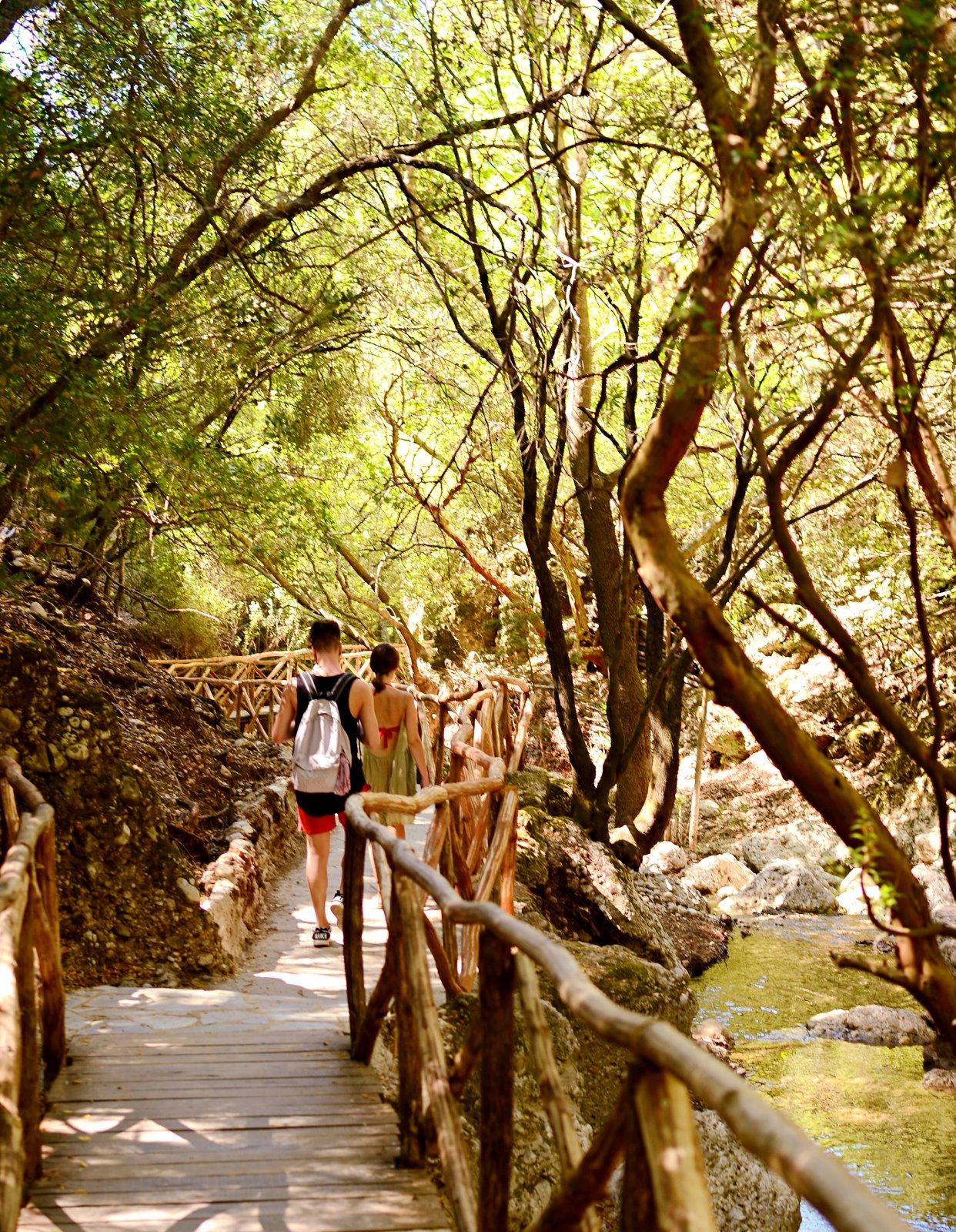 Пикник на природе и прогулка по  заповедникам с детьми