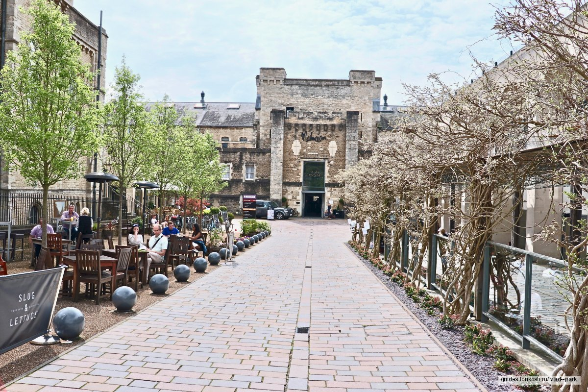 Чего больше в Оксфорде — шпилей или премьер-министров?