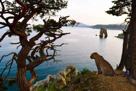 Кравцовские водопады и национальный парк «Земля леопарда»