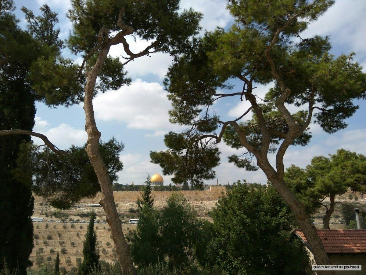 Вифлеем и православные монастыри Масличной горы