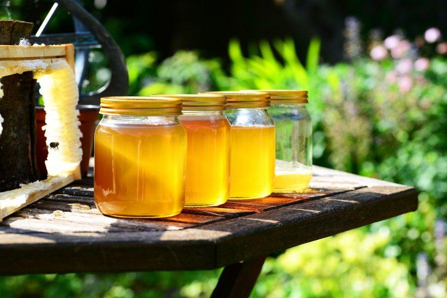 В гостях у карельского пчеловода