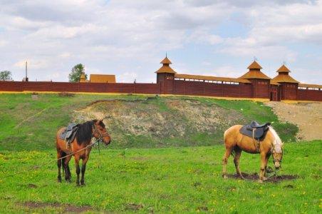 Иске-Казань (Старая Казань)