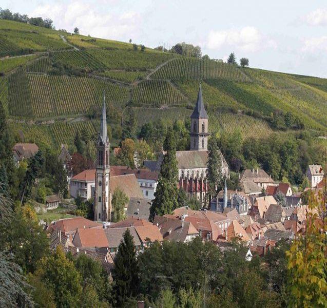 Винной дорогой Эльзаса по сказочным деревушкам с винными дегустациями