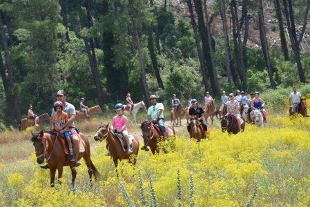 Сафари на лошадях в Мармарисе