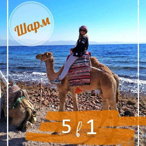 5 в 1 — Каньон + Три бассейна (Three pools) + верблюды + квадроциклы + Дахаб из Шарм-эль-Шейха