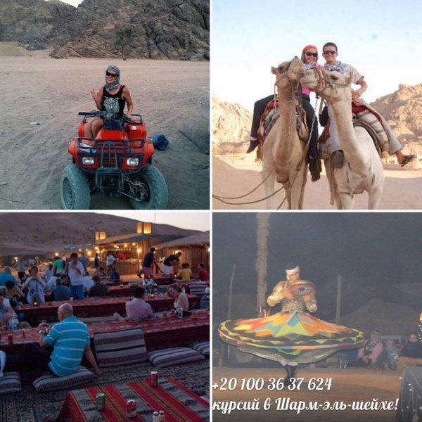 Сафари под звездным небом (квадроциклы + катание на верблюдах + ужин в бедуинском стиле + шоу)