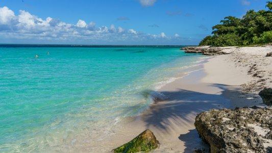 Остров Саона + дикий пляж (+ пещера Чичо).
