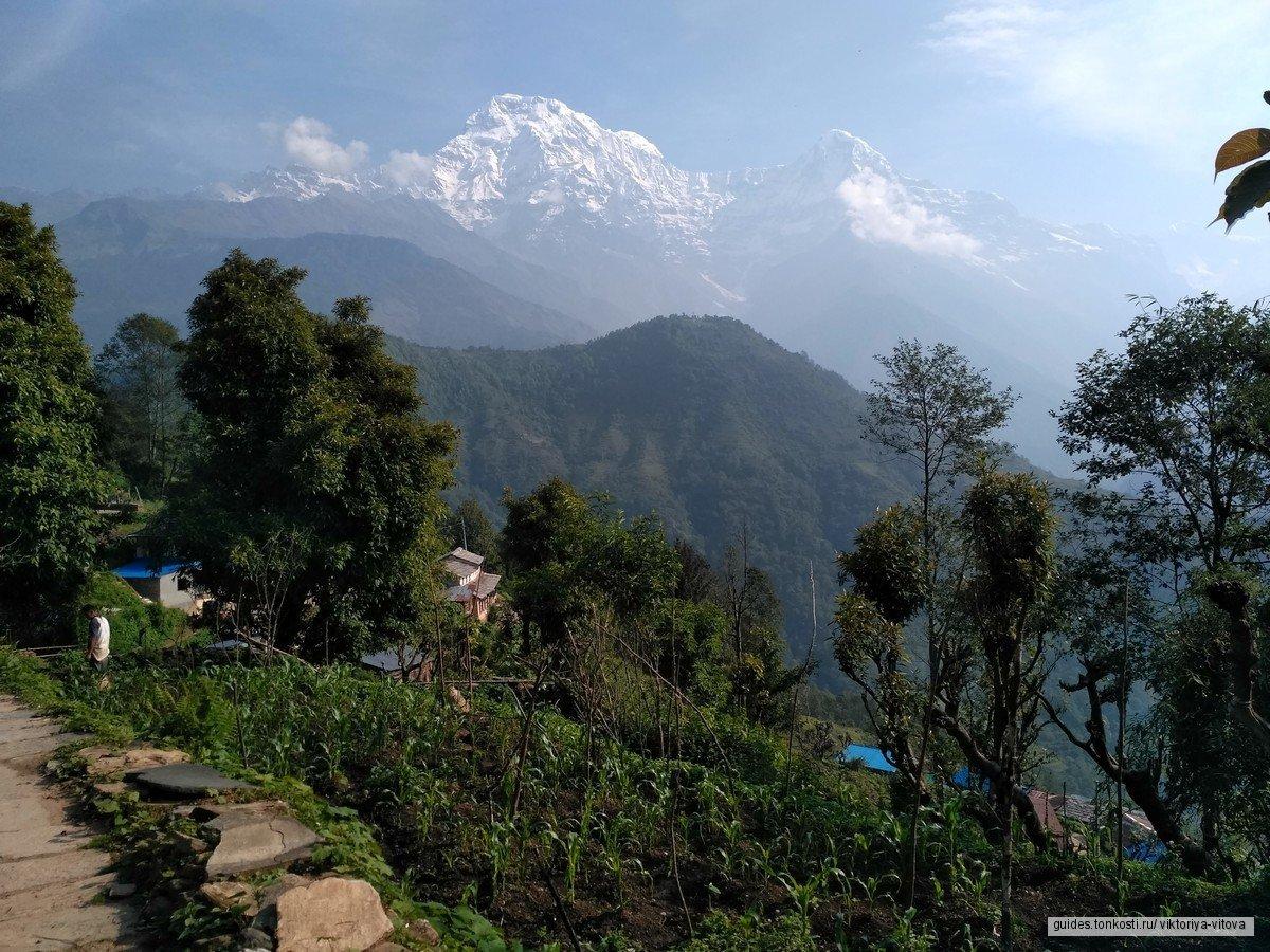 Мечта о Непале