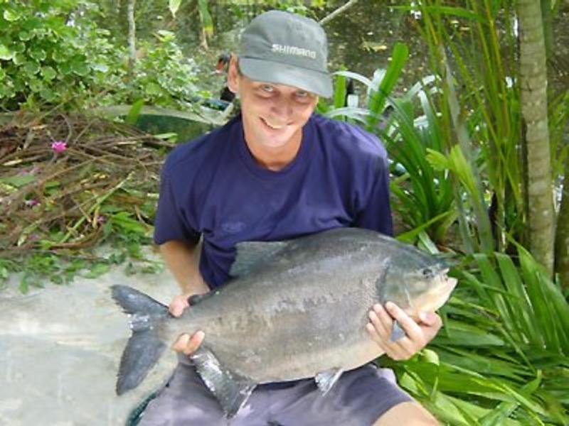 Озерная рыбалка на Пхукете. Сезон 2018-2019