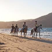 Катание на лошадях с купанием в море