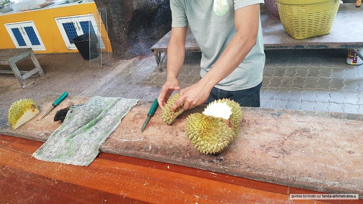 Зоопарк Khao Kheow + Сад экзотических фруктов