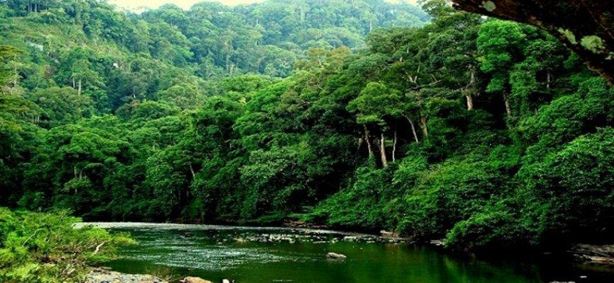 Долина Данум, затерянный мир Борнео