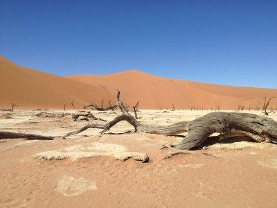 Групповой тур по Намибии