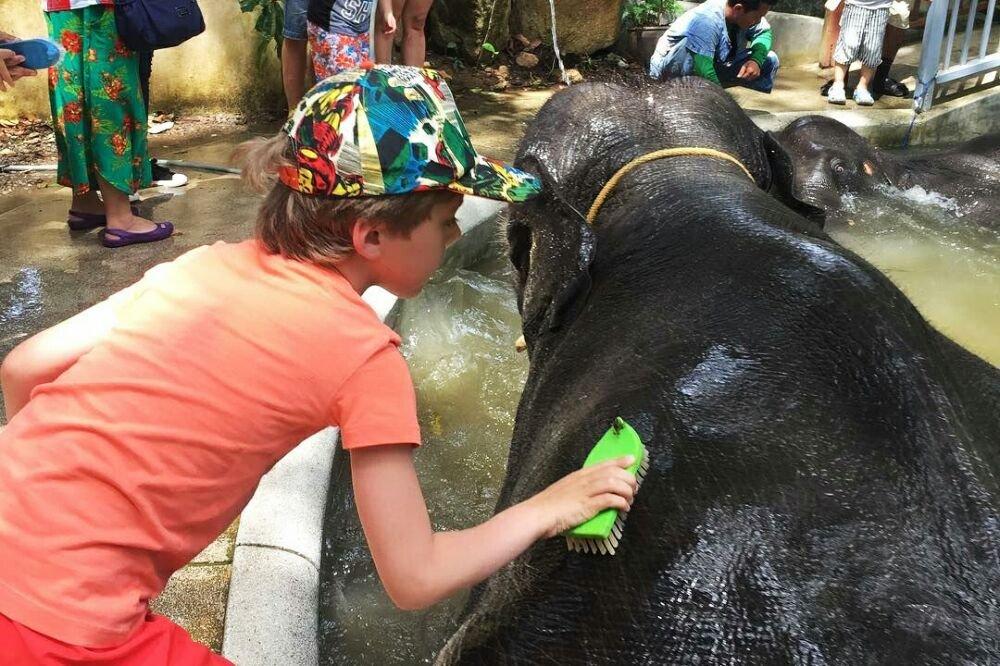 Катание на слонах — Namuang Safari Park