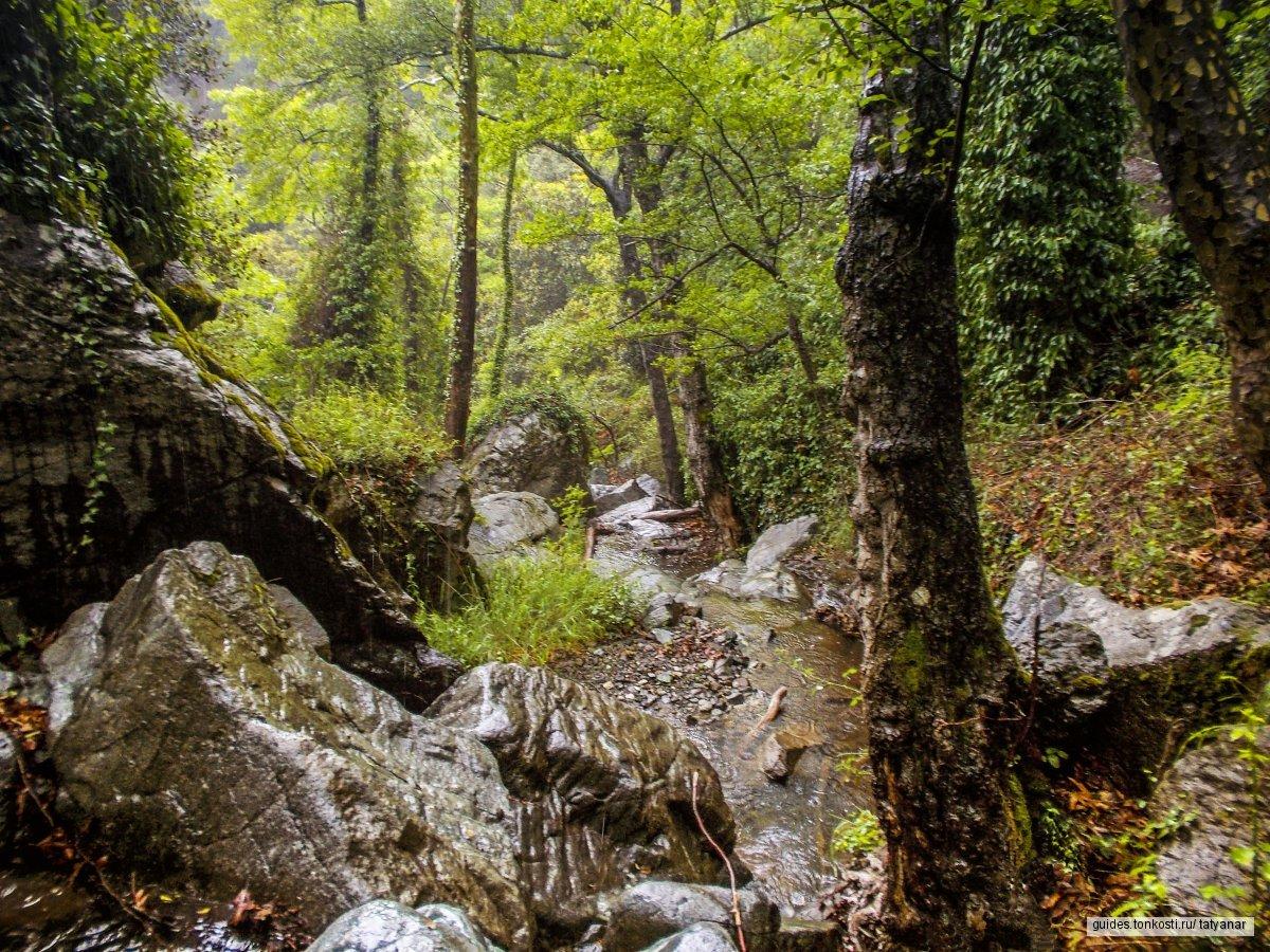 Красоты гор. Выезд из Лимассола