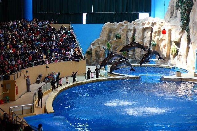 Пекинский аквариум
