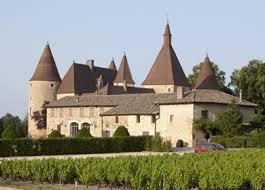Из Лиона через Божоле в Бургундию: старинные замки и погреба