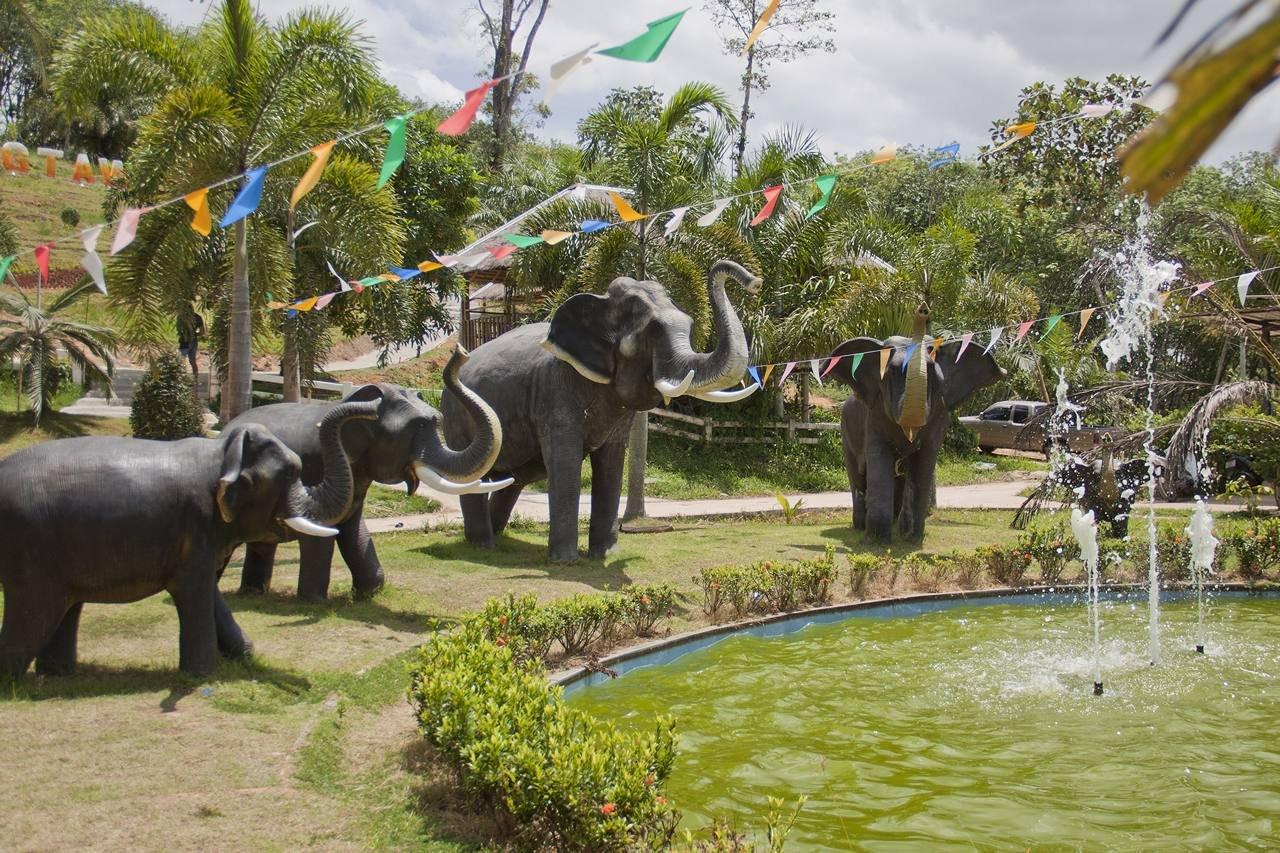 Удивительная Пханг Нга
